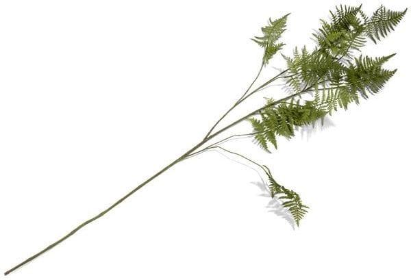 Asparagus Spray - 135 cm Coco Maison FLOWERS Lowik Wonen & Slapen