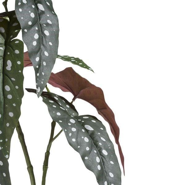 Begonia Maculata Spray - 90 cm Coco Maison FLOWERS Lowik Wonen & Slapen