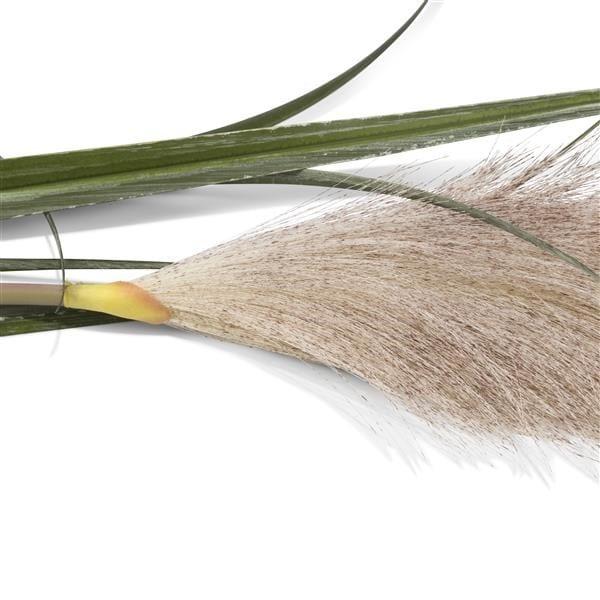 Pampus Grass - 120 cm Coco Maison FLOWERS Lowik Wonen & Slapen