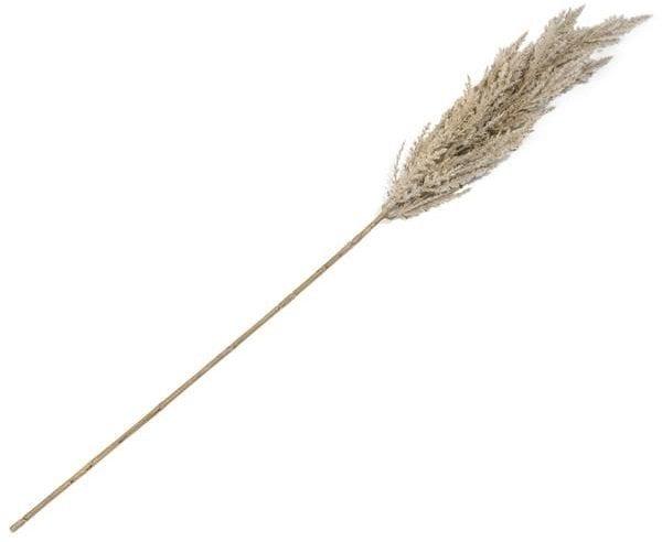 Pampus Grass Spray - 92 cm Coco Maison FLOWERS Lowik Wonen & Slapen
