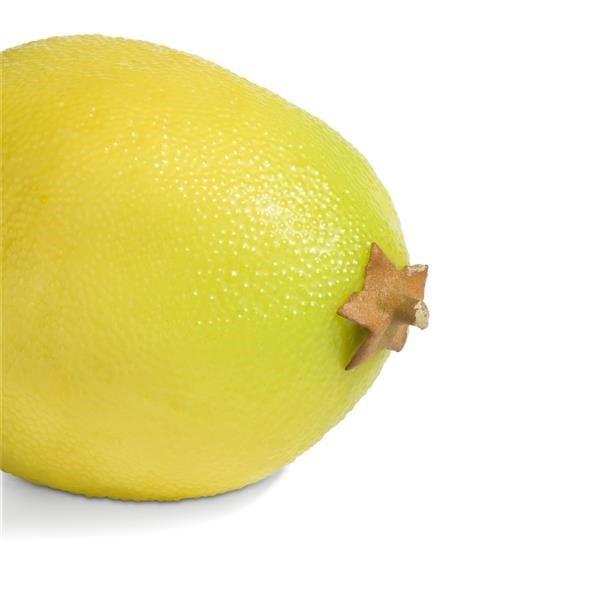 Lemon - 6 cm Coco Maison ACCESOIRES Lowik Wonen & Slapen