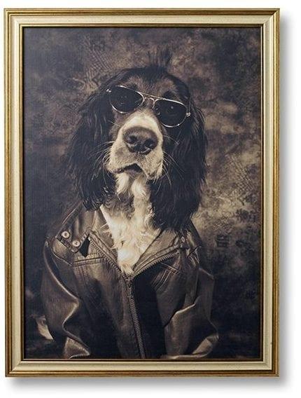 Tough dog leather jacket