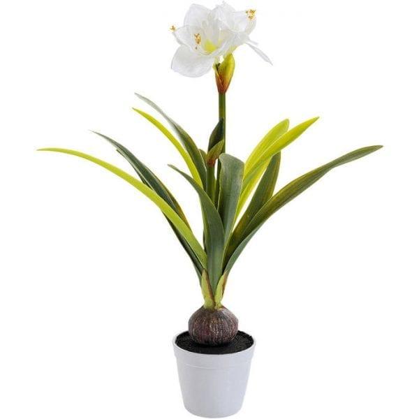 Kare Design Amaryllis White 78cm sierplant 51681 - Lowik Meubelen