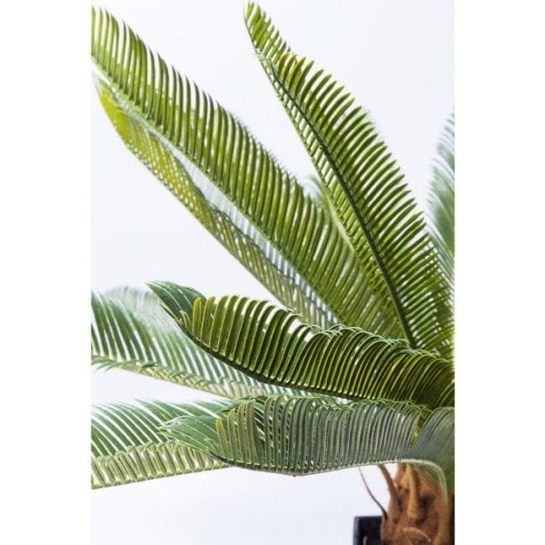 Deco Plant Cycas Tree 78cm 61200 A stroke of luck in green! They need neither water nor light, nor any other kind of care - and yet artificial plants like the Cycas Tree have almost the same effect as their living models. They add fresh touches, exude serenity and round off every interior. Exotic, boho and jungle style - here artificial plants are a must! Top tip: mix artificial plants of different sizes in a group, paying attention to different shapes of leaf. Kare Design