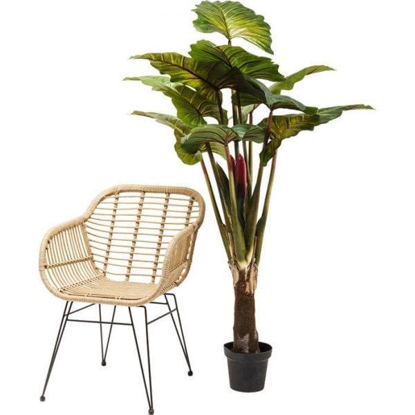 Deco Plant Rainforest Green 160cm 60720 Decoratieve plant: weinig onderhoud ..... Deze decoratieve plant heeft geen water of zonlicht nodig, maar hij ziet er echt stijlvol uit en zorgt voor coole combinaties. Perfect voor ongedwongen arrangementen in ongebruikte hoeken van de kamer en overal waar u uw wens om te versieren wilt uiten. Geeft een onmiddellijke boost van frisheid voor het interieur van uw huis. Andere versies ook beschikbaar. Kare Design