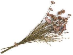 Dry Flower Bouquet - 57 cm Coco Maison FLOWERS Lowik Wonen & Slapen