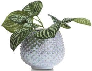 pot Sanna Large - hoogte 16 cm Coco Maison ACCESOIRES Lowik Wonen & Slapen