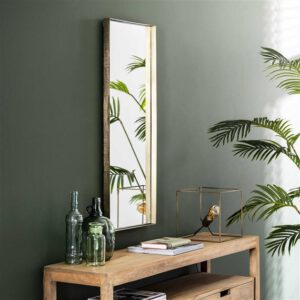 Spiegel 40x100 opstaande rand / Goudkleurig. Spiegel uit de spiegels collectie van Bullcraft kleinmeubelen & verlichting bij Löwik Meubelen