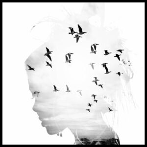 Profijt Meubel Wanddecoratie op hout 'Free As A Bird'  Wanddecoratie