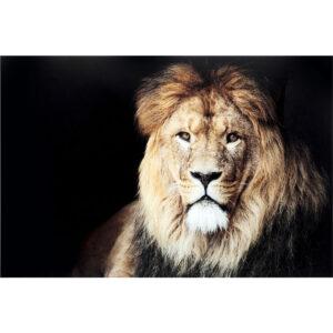 Kare Design Schilderij Glas King of Lion 150x100 schilderij 53083 - Lowik Meubelen