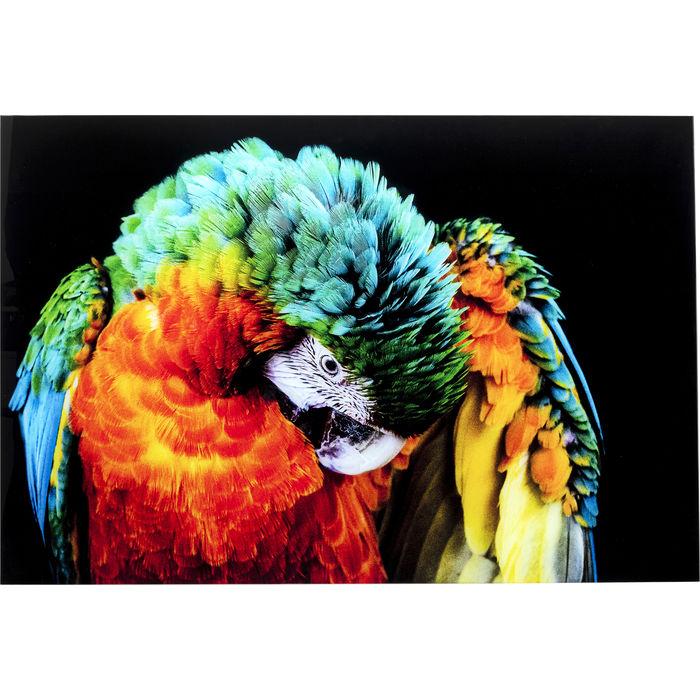 Schilderij Glas Tropical Parrot - - 120x80