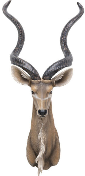 Kare Design Wanddecoratie Antelope wanddecoratie 52923 - Lowik Meubelen