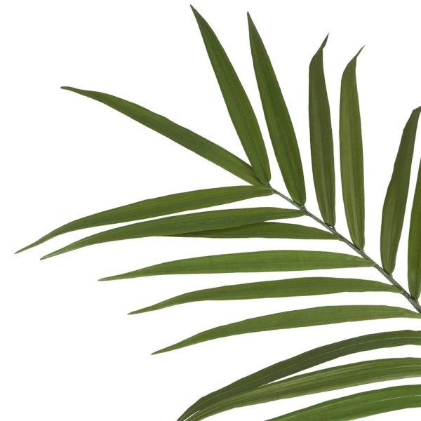 COCO maison Kentia palm H180cm  Kunstbloem