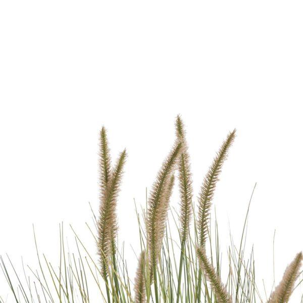 COCO maison Pennisetum grass plant H99cm  Kunstbloem