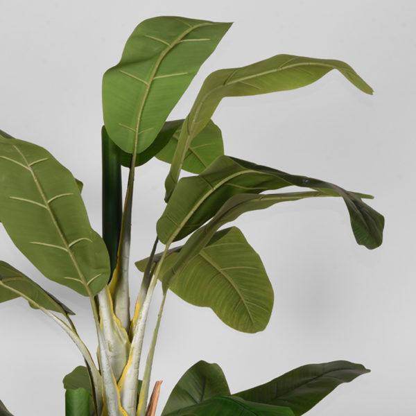 LABEL51 Musa - Groen - Kunststof - 180 Groen Woondecoratie