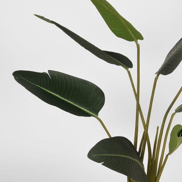 LABEL51 Strelitzia - Groen - Kunststof - 100 cm Groen Woondecoratie
