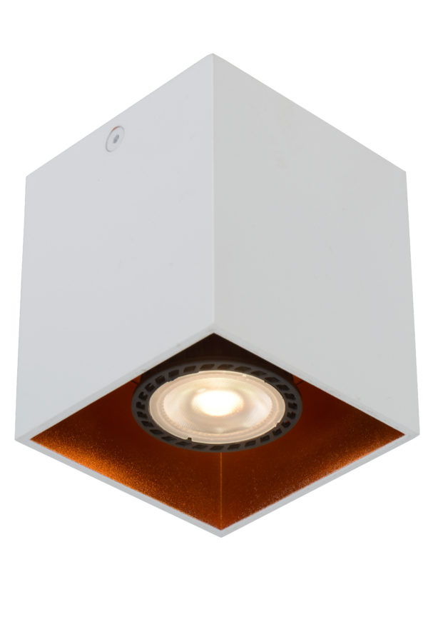 Bido plafondspot - wit Lucide Plafondspot 22966/01/31