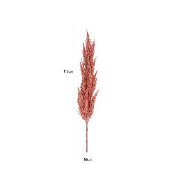 Richmond Interiors Gras Pampas pink groot (6 stuks)  Woonaccessoire