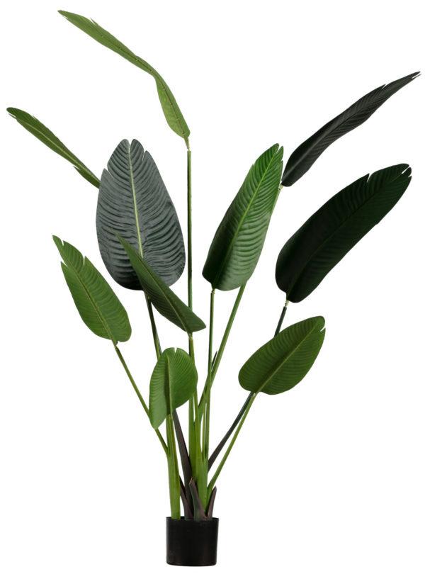 WOOOD Strelitzia Kunstplant Groen 164cm Green Woonaccessoire