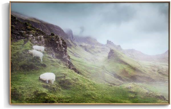COCO maison Highlands print 100x70cm  Schilderij