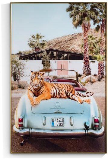 COCO maison Tiger King print 90x140cm  Schilderij