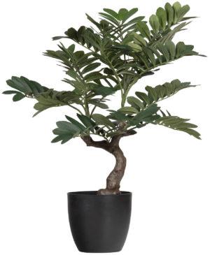 WOOOD Zamia Kunstplant Groen 76cm Green Woonaccessoire
